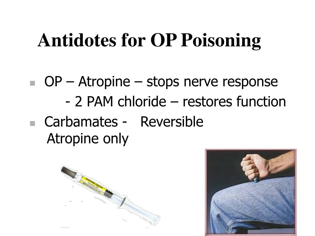 Antidotes for OP Poisoning