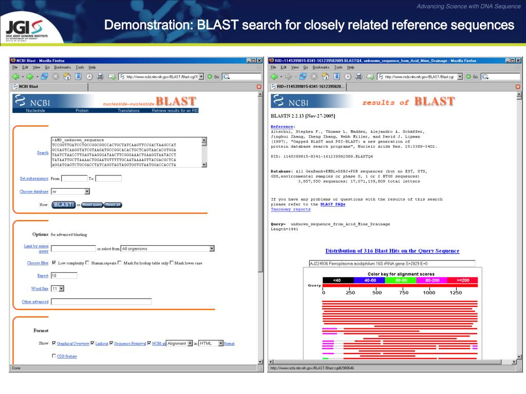 Demonstration: BLAST search for closely related reference sequences