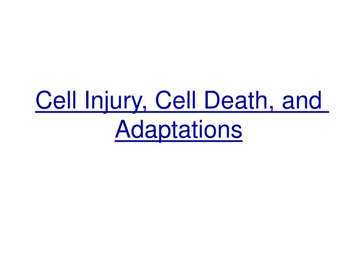 cell injury cell death and adaptations n.