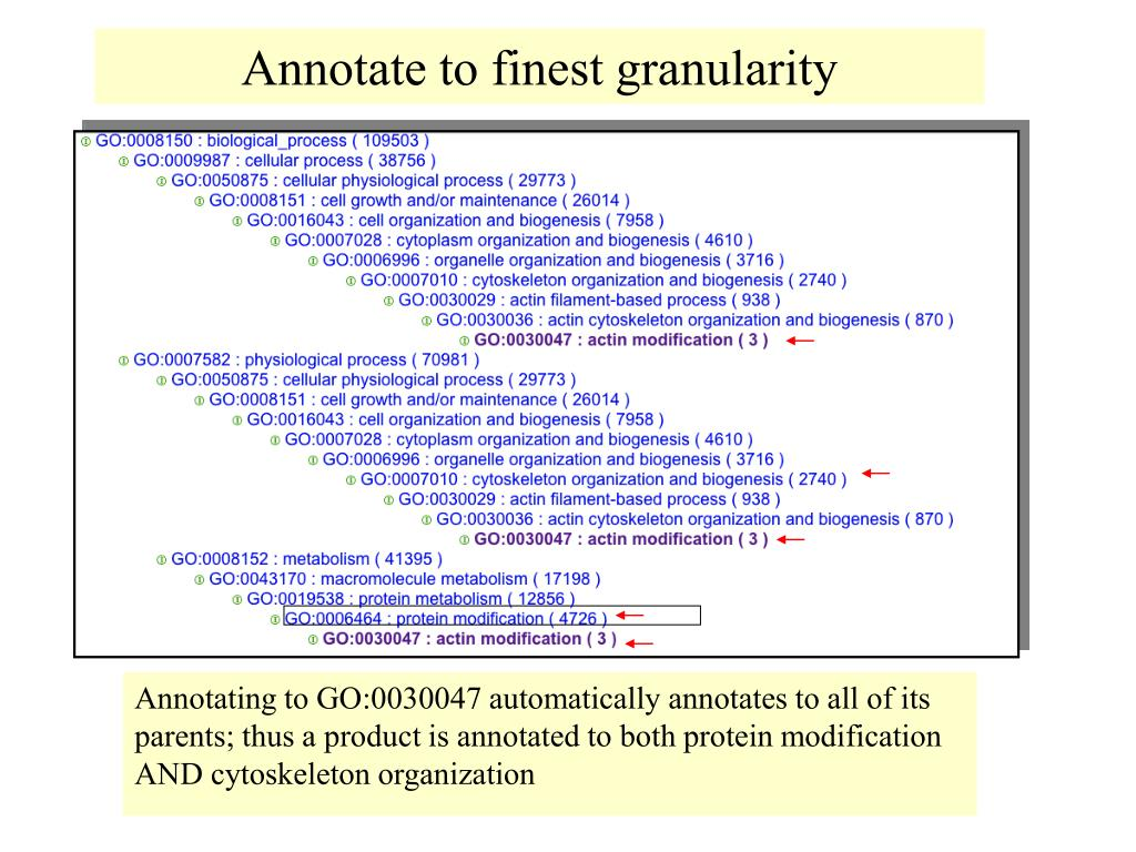 Annotate to finest granularity