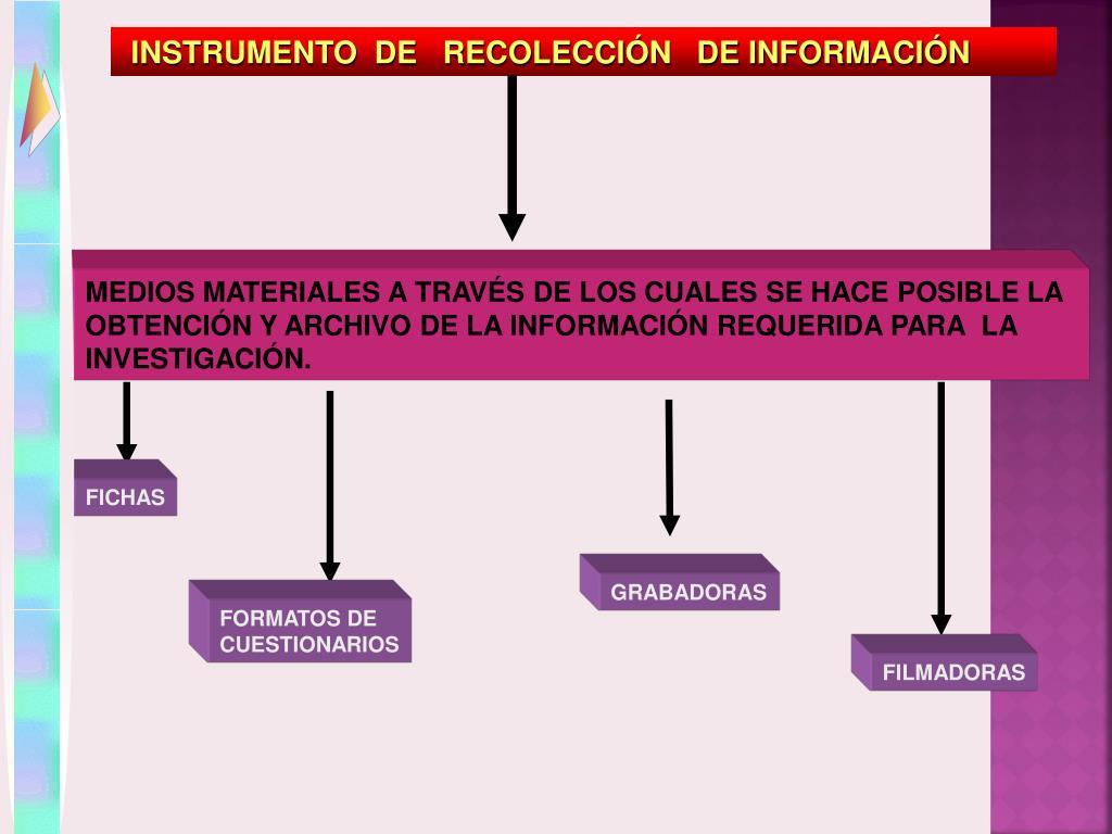 INSTRUMENTO  DE   RECOLECCIÓN   DE INFORMACIÓN