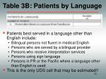 table 3b patients by language
