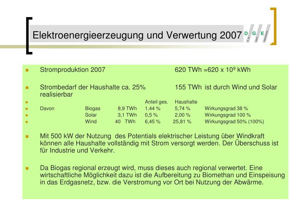 Elektroenergieerzeugung und Verwertung 2007