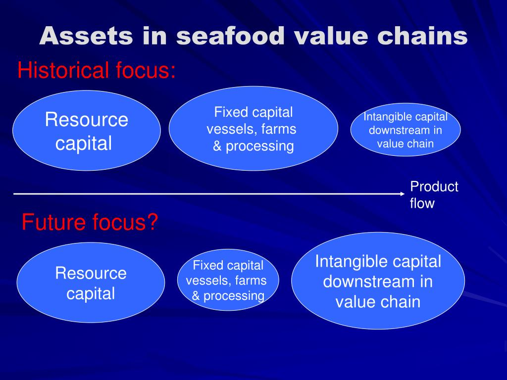Assets in seafood value chains