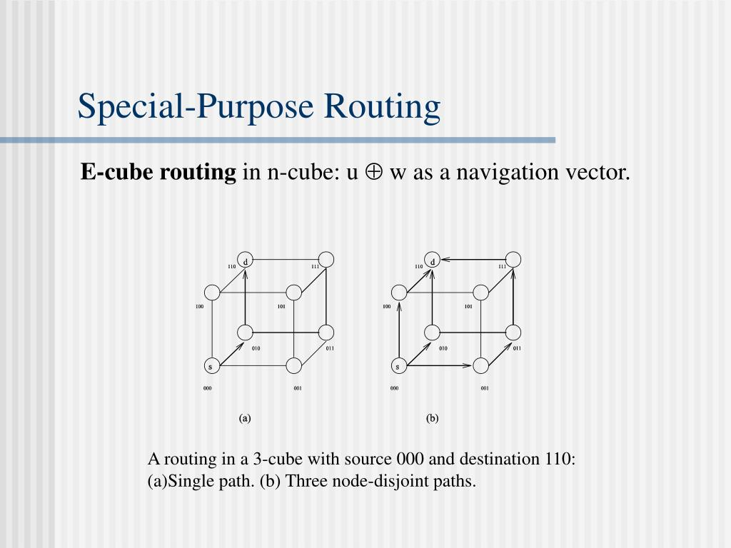 Special-Purpose Routing