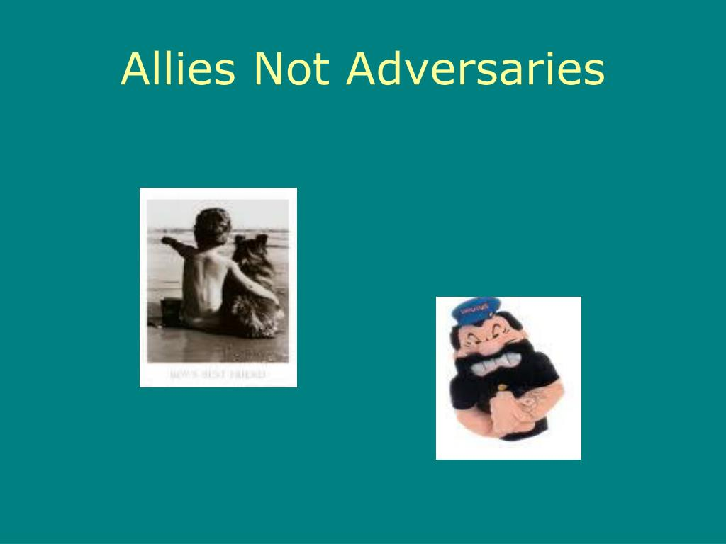 Allies Not Adversaries