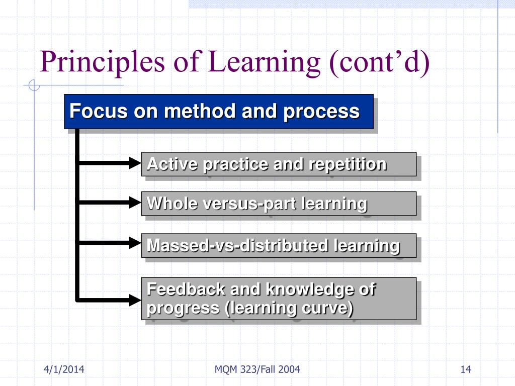 Principles of Learning (cont'd)