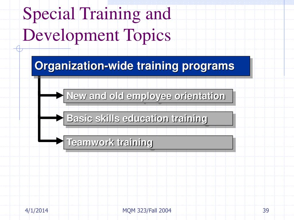 Special Training and Development Topics