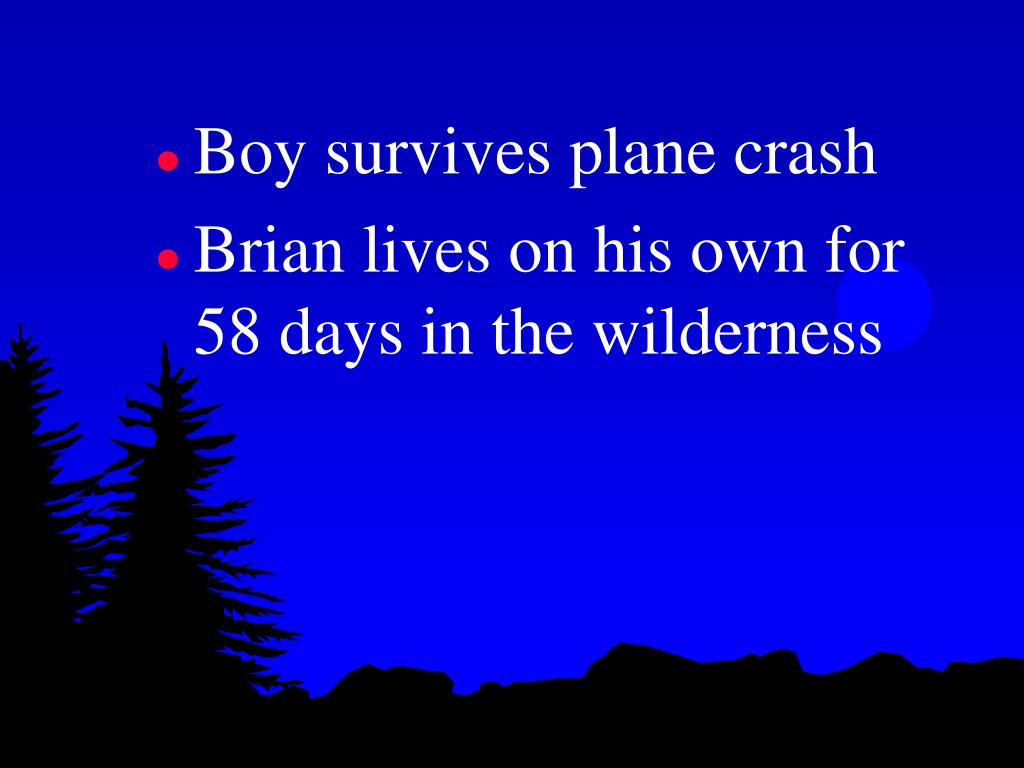 Boy survives plane crash