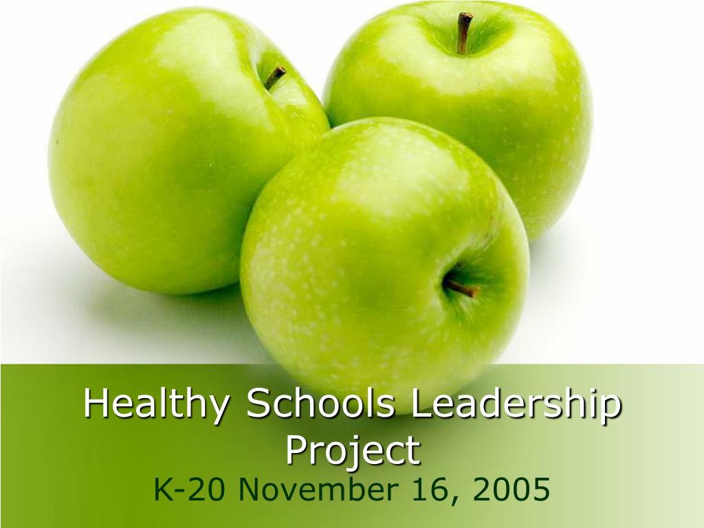 healthy schools leadership project l.