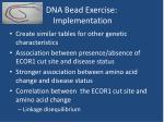 dna bead exercise implementation14