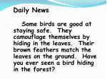 daily news77