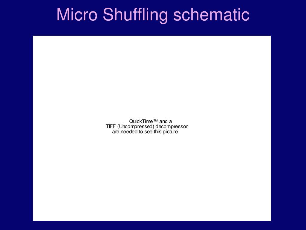 Micro Shuffling schematic
