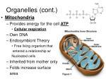 organelles cont18