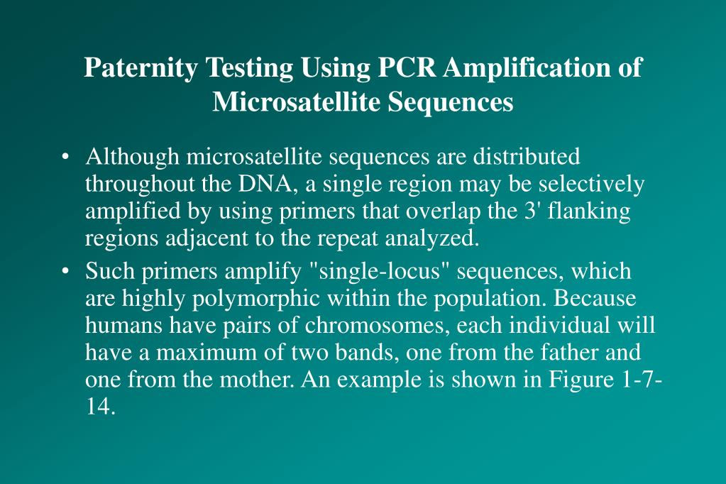 Paternity Testing Using PCR Amplification of Microsatellite Sequences