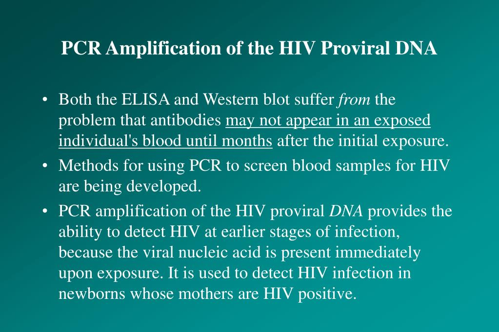 PCR Amplification of the HIV Proviral DNA
