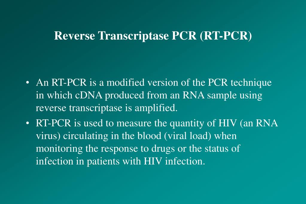 Reverse Transcriptase PCR (RT-PCR)