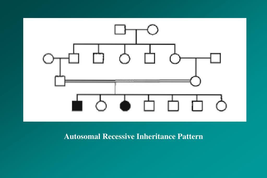 Autosomal Recessive Inheritance Pattern