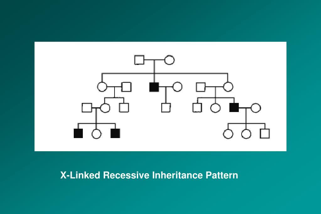X-Linked Recessive Inheritance Pattern