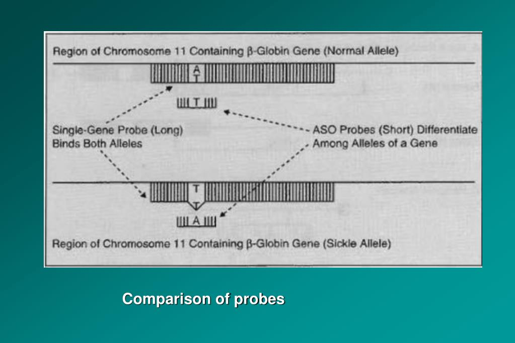 Comparison of probes