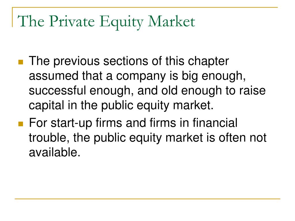 The Private Equity Market