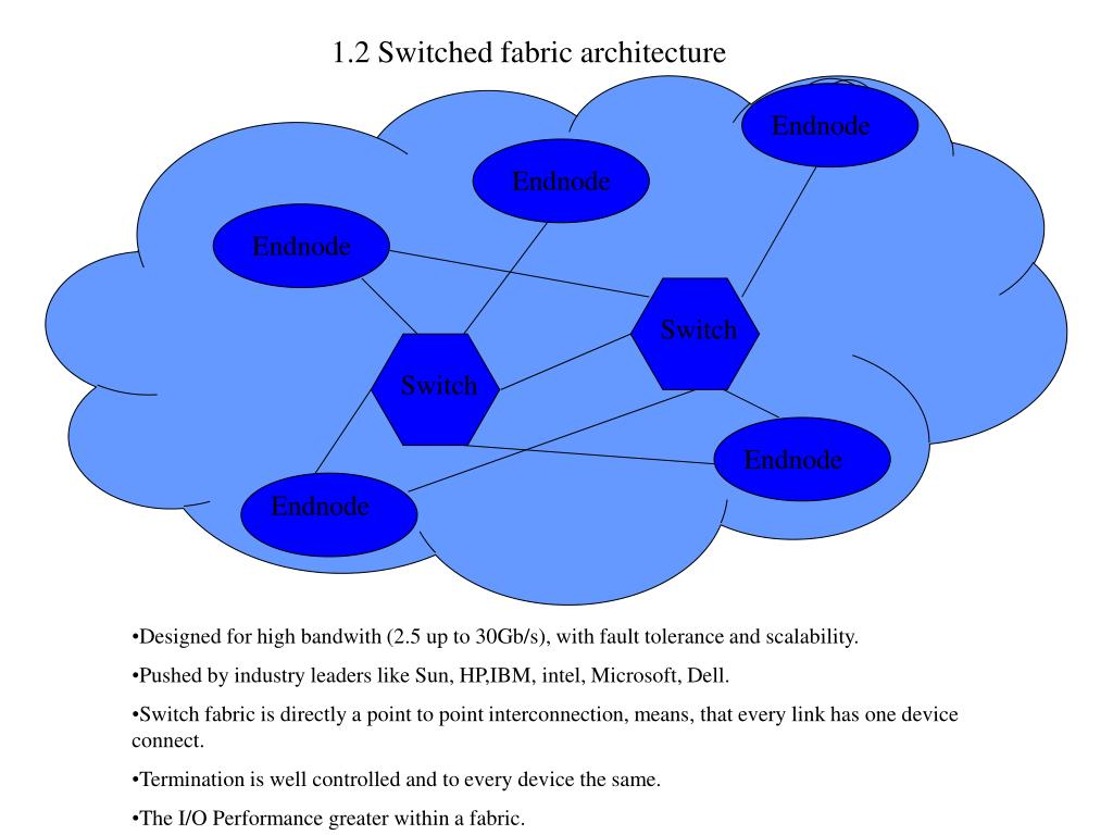 1.2 Switched fabric architecture