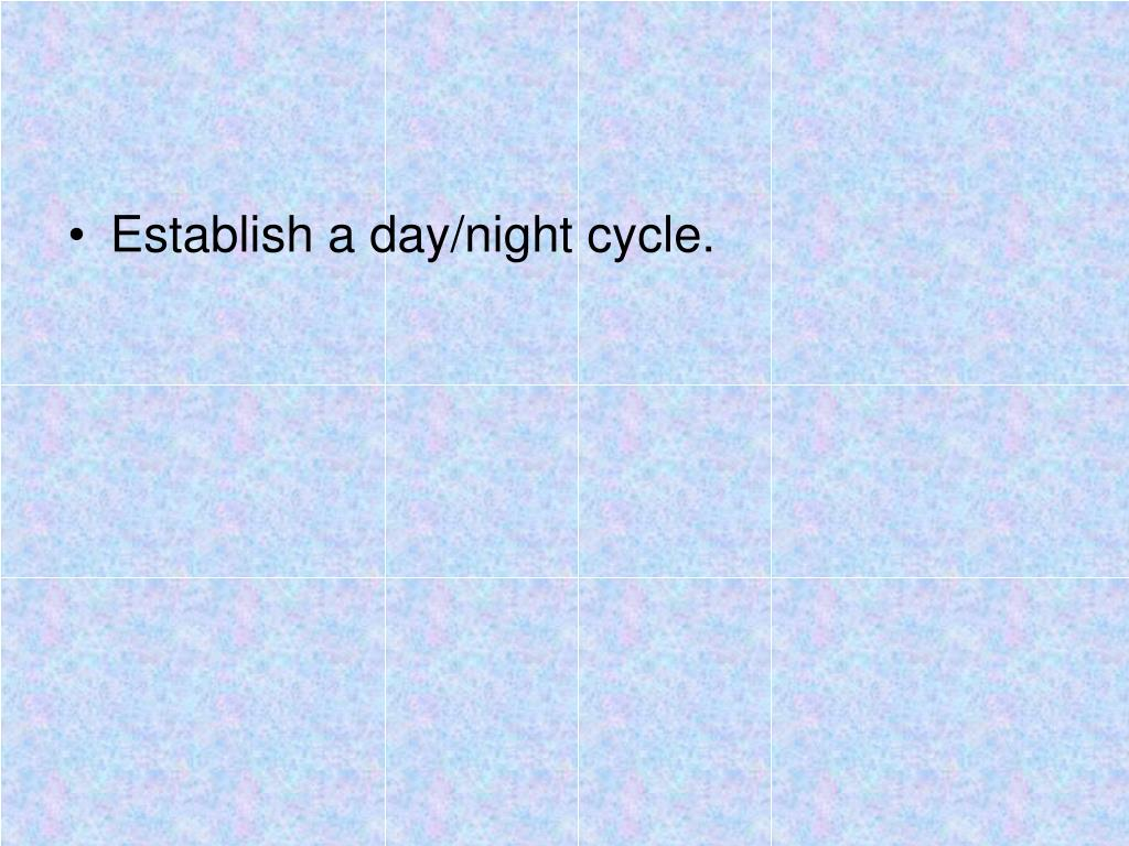 Establish a day/night cycle.
