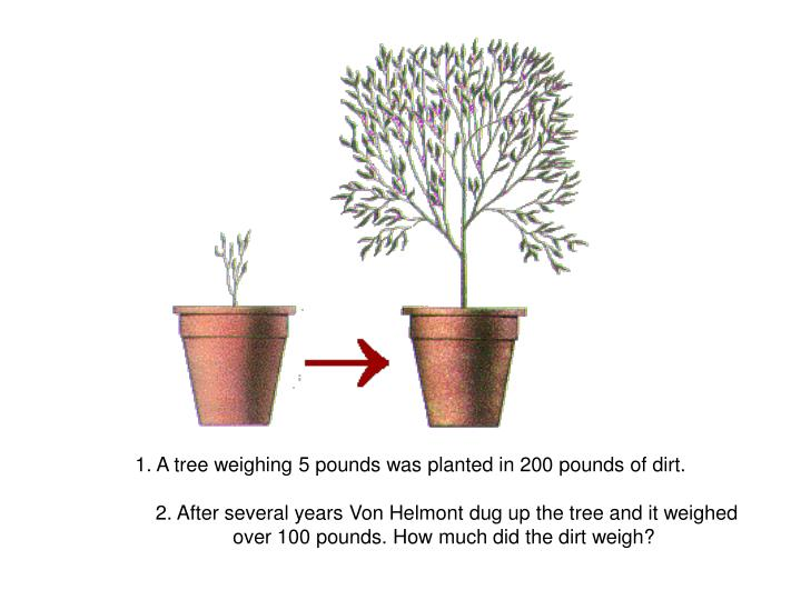 1. A tree weighing 5 pounds was planted in 200 pounds of dirt.
