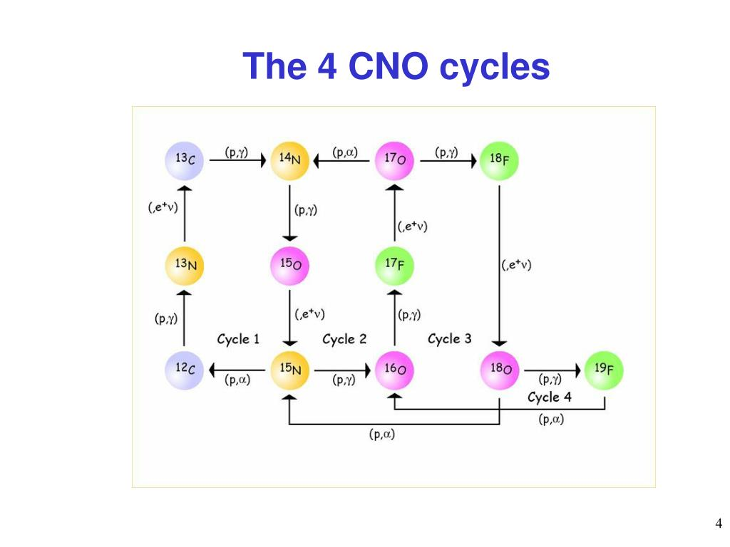 The 4 CNO cycles