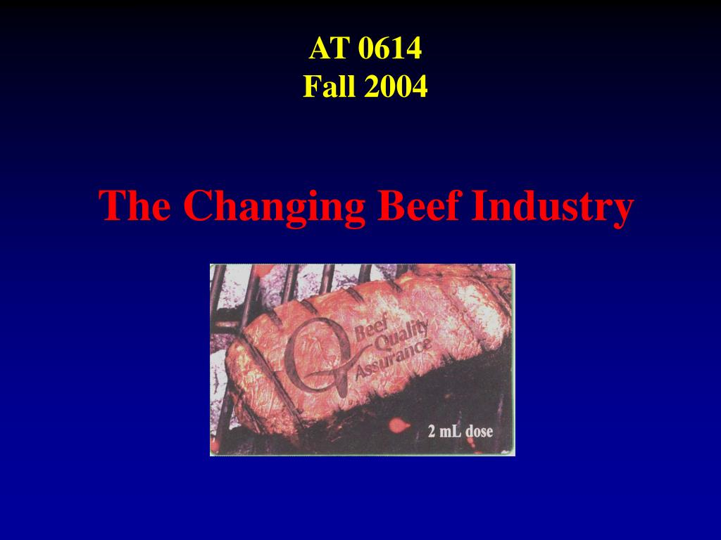 the changing beef industry l.