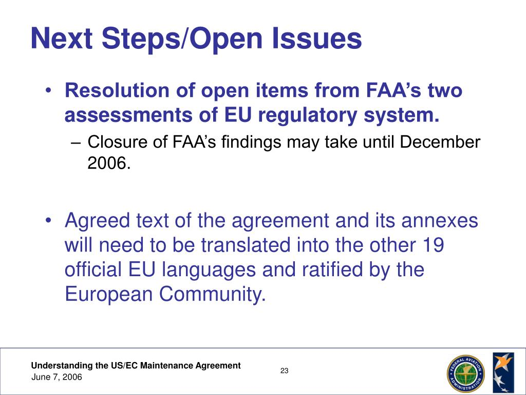 Next Steps/Open Issues