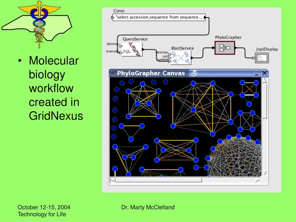 Molecular biology workflow created in GridNexus