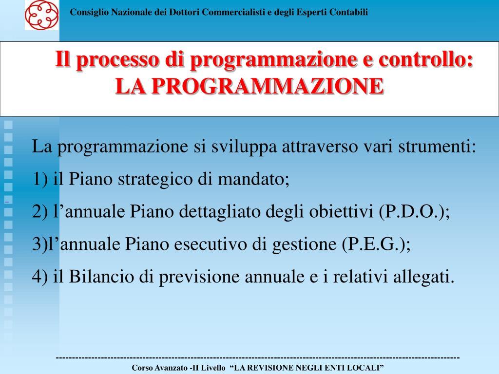 La programmazione si sviluppa attraverso vari strumenti: