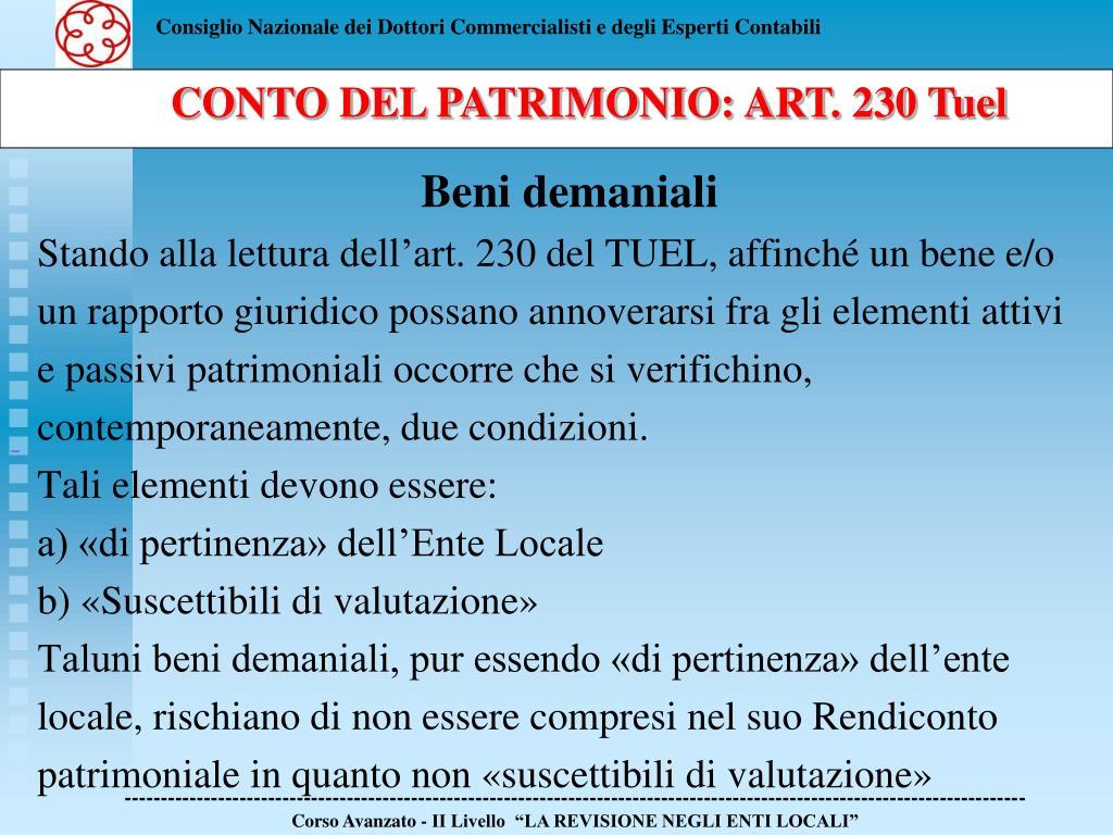 CONTO DEL PATRIMONIO: ART. 230