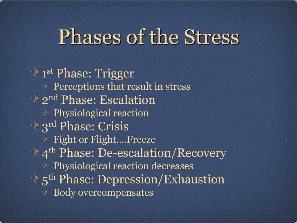 Phases of the Stress
