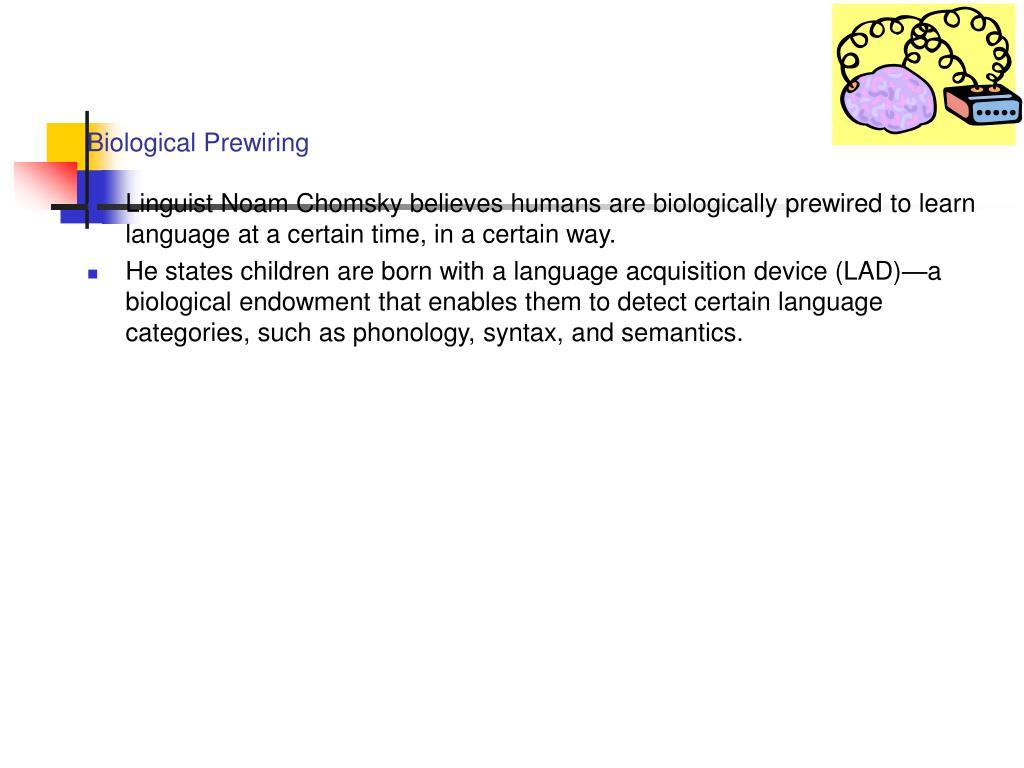 Biological Prewiring