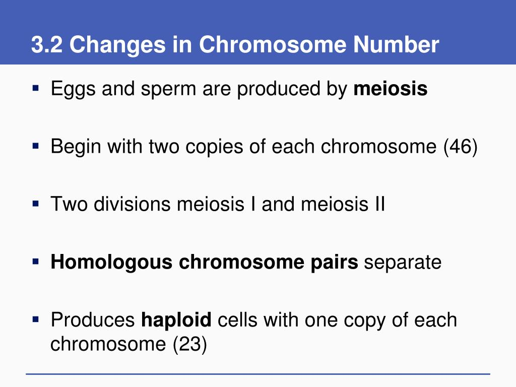 3.2 Changes in Chromosome Number