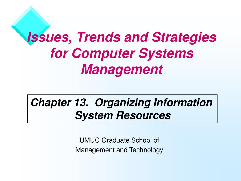 issues trends and strategies for computer systems management l.