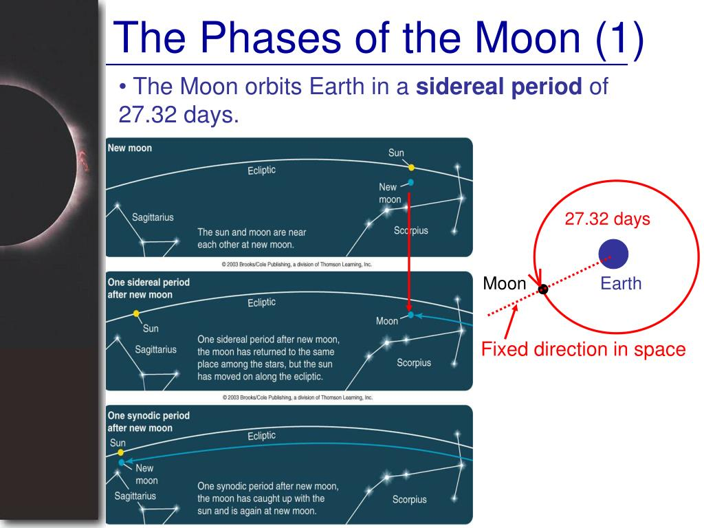 The Phases of the Moon (1)