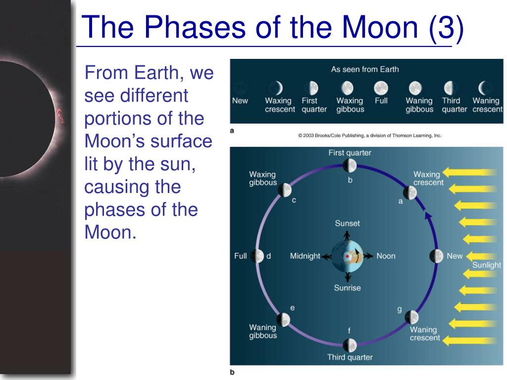 The Phases of the Moon (3)