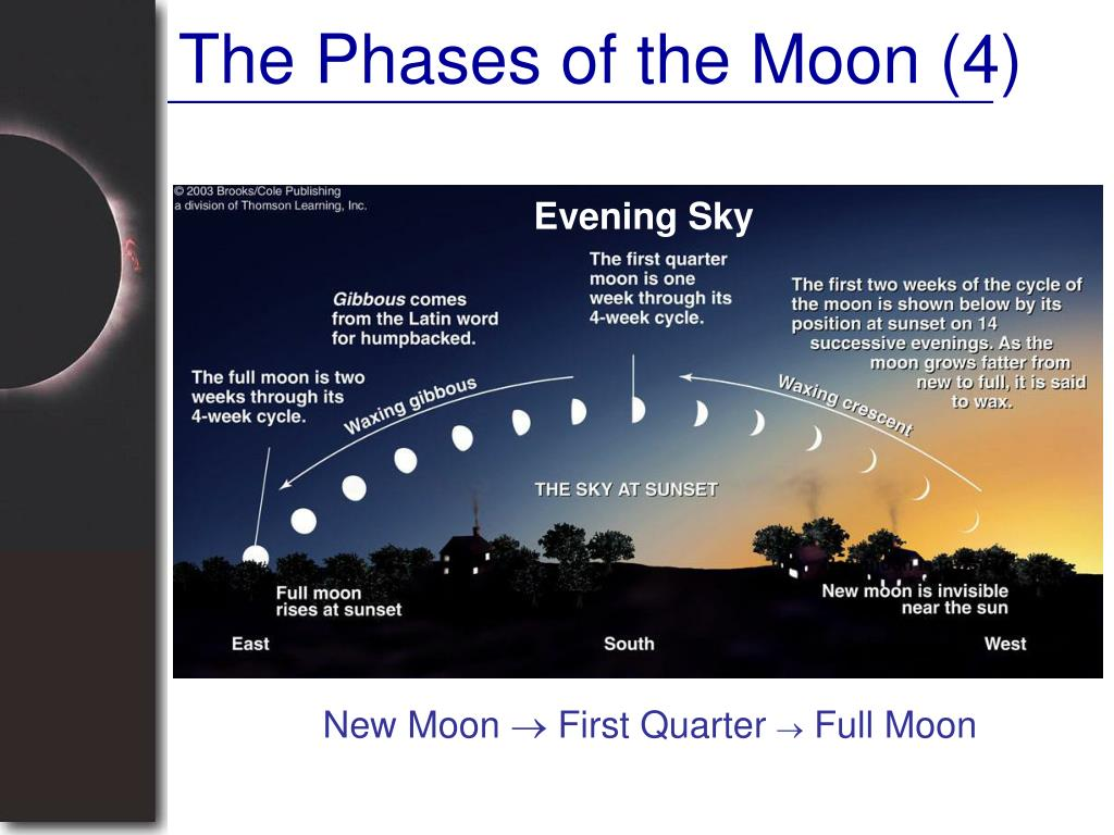 The Phases of the Moon (4)