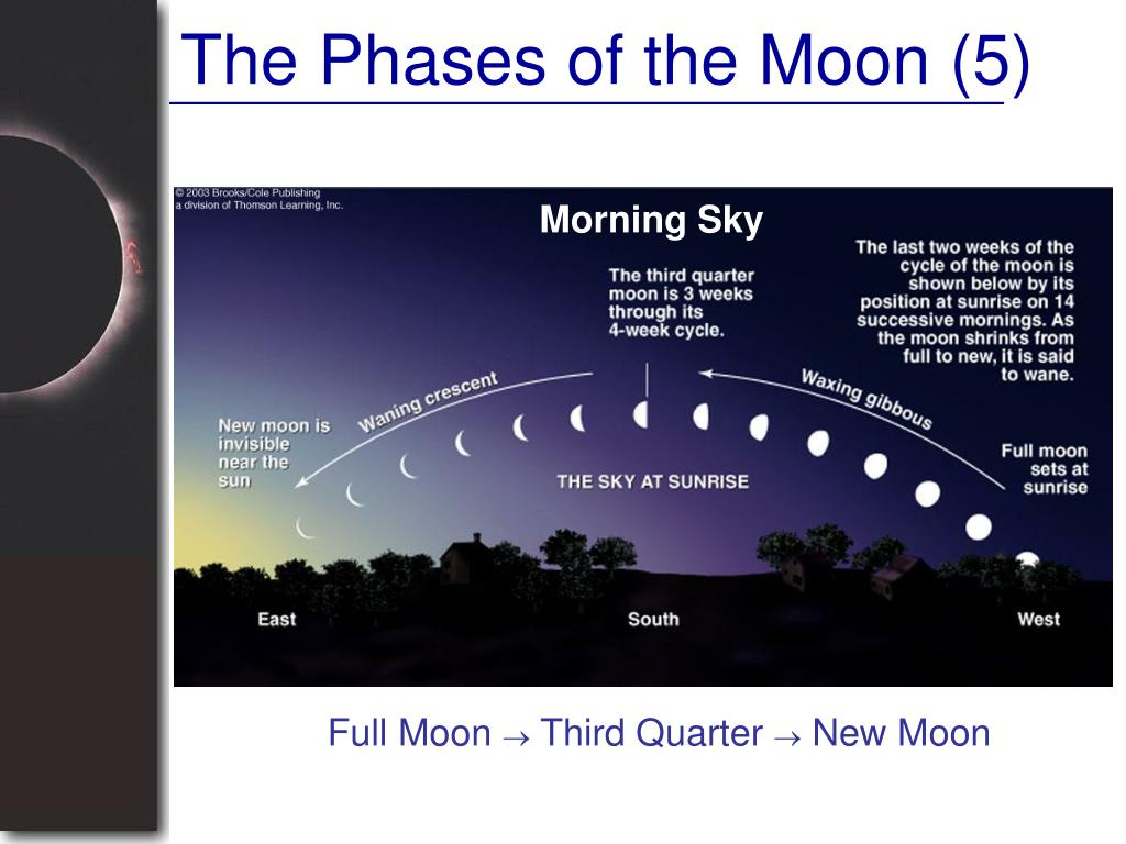 The Phases of the Moon (5)