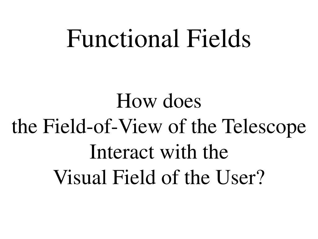 Functional Fields