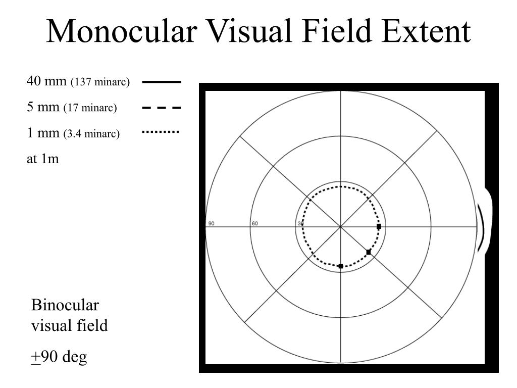 Monocular Visual Field Extent