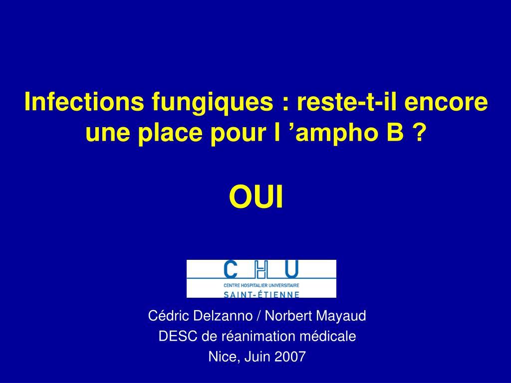 infections fungiques reste t il encore une place pour l ampho b oui l.