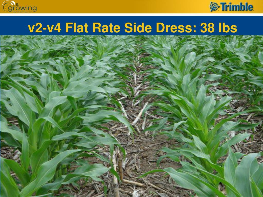 v2-v4 Flat Rate Side Dress: 38 lbs