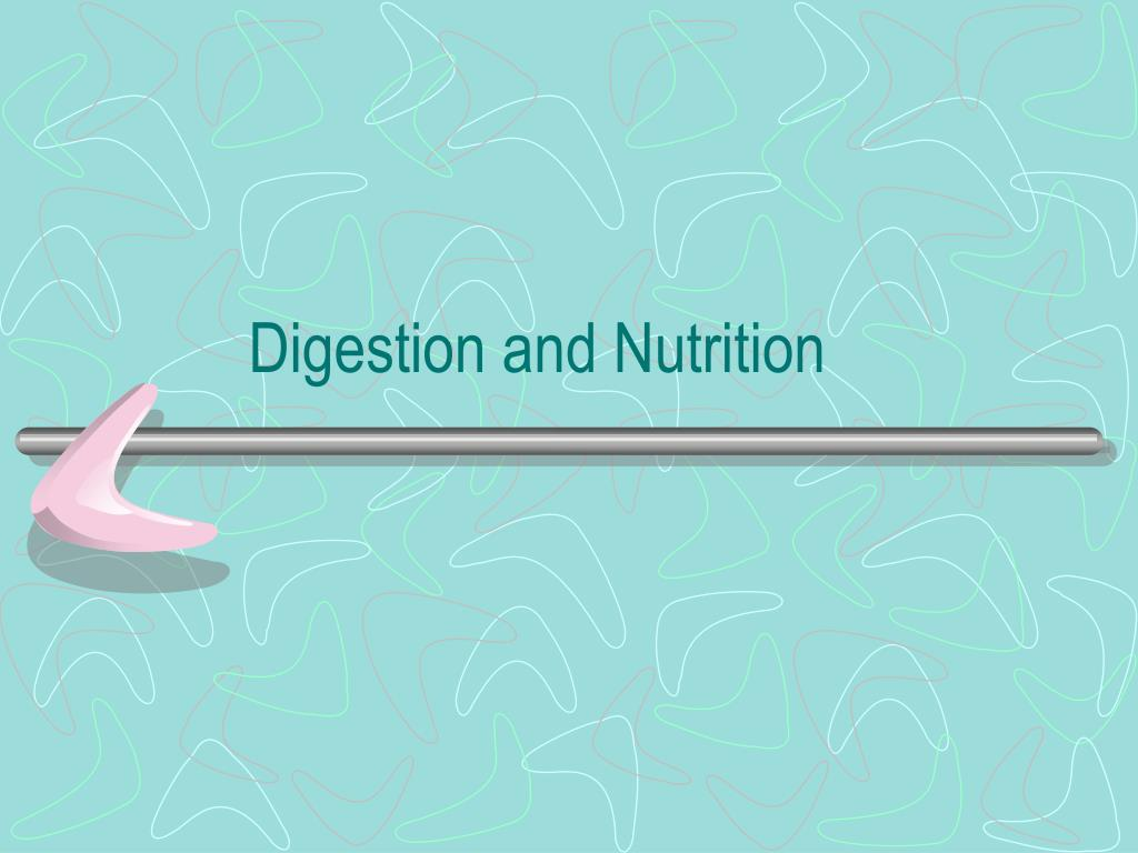 digestion and nutrition l.