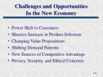 challenges and opportunities in the new economy