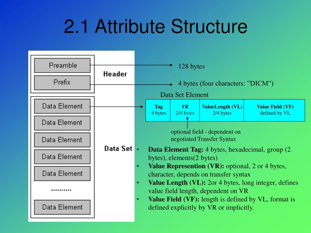 2.1 Attribute Structure