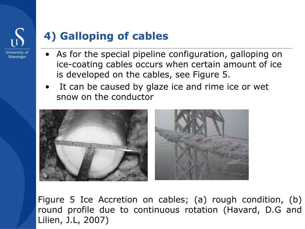 4) Galloping of cables